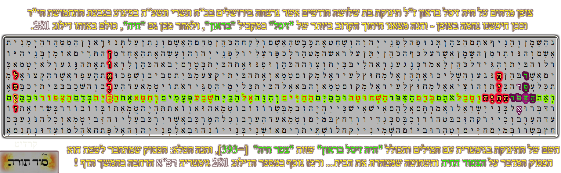 """חיה זיסל בראון ז""""ל תינוקת בת שלושה חודשים אשר נרצחה בירושלים בפיגוע בגבעת התחמושת הי""""ד. ובכן חיפשנו נחמה והנה חיתוך הקרוב ביותר של """"זיסל"""" במקביל """"בראון"""", ולאחר מכן גם """"חיה"""", כולם באותו דילוג 281. נשים לב שהדילוג """"חיה"""", חותך את הפסוק ואתהצפרהחיה: """"וְלָקַח אֶת עֵץ הָאֶרֶז וְאֶת הָאֵזֹב וְאֵת שְׁנִי הַתּוֹלַעַת וְאֵת הַצִּפֹּר הַחַיָּה וְטָבַל אֹתָם בְּדַם הַצִּפֹּר הַשְּׁחוּטָה וּבַמַּיִם הַחַיִּים וְהִזָּה אֶל הַבַּיִת שֶׁבַע פְּעָמִים"""", ורואים ששמה של התינוקת חותך את הציפור החי""""ה ורומז שהיא בחינת הציפור החיה. וכאן מדובר על טהרת הבית המנוגע, כאשר בא נגע צרעת לבית שרומז לכך שבעל הבית מחזיק עבירות בידו כמו שדרשו חז""""ל (ערכין טז.) על שבעה דברים נגעים באין על לשון הרע ועל שפיכות דמים וכו'. והכהן מוציא כל הכלי חרס מהבית למשך שבוע והבית בהסגר ולאחר מכן שב הכהן לראות אם התפשט הנגע, אם המשיך להתפשט אז צריך לחלוץ ולקצות ולהטיח את הבית במקום שהנגע ואחרי זה לחכות שבוע נוסף לראות אם הנגע חוזר למקומו, אם חוזר למקומו צריך ליתוץ את הבית כולו משום שאין לו תקנה כבר, ואם לא חוזר הנגע מביא בעל הבית קרבן שתי צפורים טהורות ועץ ארז ותולעת שני ואזוב. ויתכן שרומז שהבית זה בחי' עם ישראל והצפור החיה, שבגימטריה עם המילים והכולל """"חיה זיסל בראון"""" שווה """"צפר חיה"""" [=393], ורומז שהיא באה לעולם בבחינת צפור שכידוע צפור זאת הנפש וכן פירש אור החיים, """"שתי צפרים חיות טהורות הם ב' משיחים ונקרא צפור כי כן יתכנו נשמות העליונות"""", וניראה שהיא היתה נשמה גבוהה שהרי באה לעולם לתיקון קצר בלבד לשלושה חודשים וחזרה, ויתכן וזאת בחינת ההשתלחות של הצפור שנאמר בהמשך: """"נג  וְשִׁלַּח אֶת הַצִּפֹּר הַחַיָּה אֶל מִחוּץ לָעִיר אֶל פְּנֵי הַשָּׂדֶה וְכִפֶּר עַל הַבַּיִת וְטָהֵר"""", רומז לכך שחזרה למקומה מחוץ לעיר, ובכך מכפרת על הבית עם ישראל. ועוד יש לזה רמז, שכל הדילוגים כאמור מופיעים בדילוג אחד 281, בגימטריה רפ""""א. וגם הדילוג """"רפא"""" מופיע במקביל ממש ל-""""חיה"""". ולשון רפואה תמיד נופל על טהרת נגעים כמו שנאמר במרים שהיתה מצורעת כשלג, """"אל נא רפא נא לה"""", וגם כאן נאמר """"וְטִהַר הַכֹּהֵן אֶת הַבַּיִת כִּי נִרְפָּא הַנָּגַע""""."""